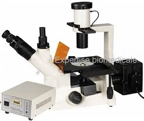 microscope inversé a fluorescence 403-Y