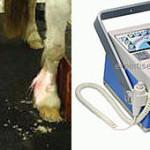 Appareil de radiologie equine DIG 610